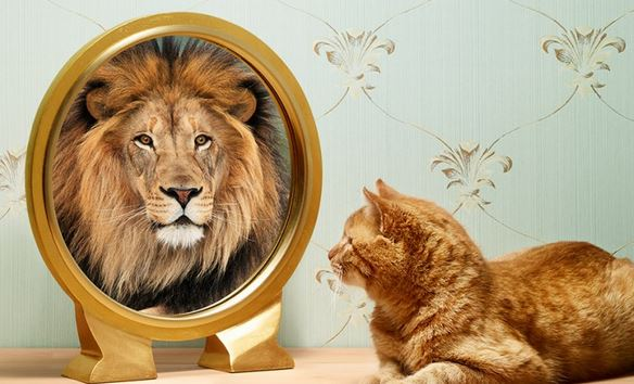 como tener autoconfianza